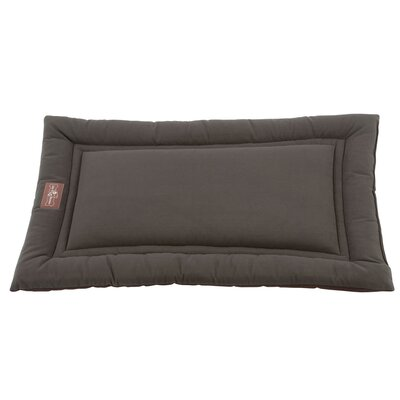 Sleeper Dog Mat Size: Large (36 L x 23 W), Color: Pewter