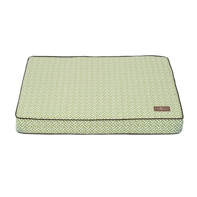 Hera Everyday Cotton Rectangular Pillow Bed Size: Medium (36 L x 28 W), Color: Green