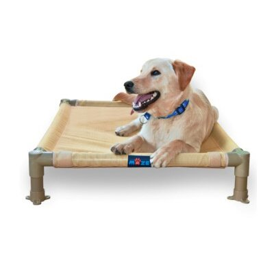 Cool Cot Elevated Pet Mat Size: Medium (32 L x 26 W)