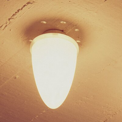 Image of Celys Ceiling Flush Mount