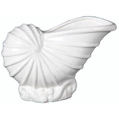 Ceramic Shell Vase Size: Large