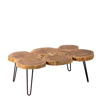 Gallagher Natural Trunk Coffee Table