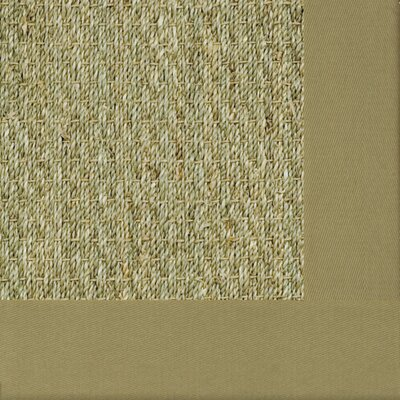 Botanical Blends Spring Bordered Green Mist Area Rug Rug Size: 3' x 5'