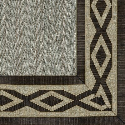 Botanical Blends Hacienda Herringbone Meadow Labyrinth Bordered Green Area Rug Rug Size: 6 x 9