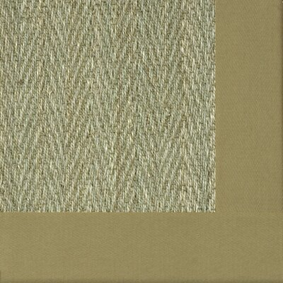 Botanical Blends Hacienda Herringbone Bordered Green Mist Area Rug Rug Size: 6 x 9