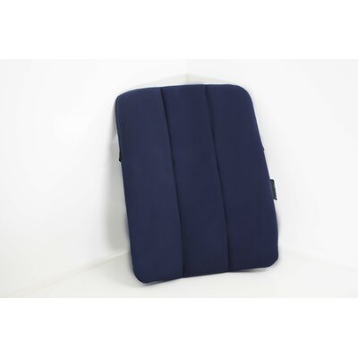LeanOn Back Support Color: Blue