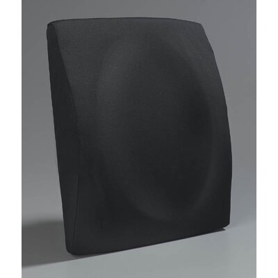 Lumbar Color: Black, Type: Concave