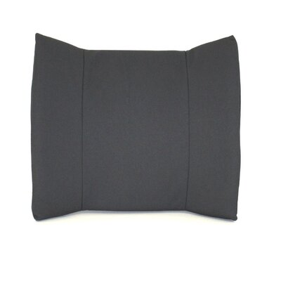Lumbar Color: Gray, Type: Standard