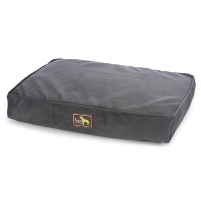 Orthopedic Pillow with Easy Wash Cover Size: 5 H x 50 W x 42 D, Color: Black
