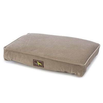 Orthopedic Pillow with Easy Wash Cover Size: 5 H x 50 W x 42 D, Color: Brown