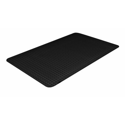 Industrial Doormat Color: Black, Size: Rectangle 24 x 36