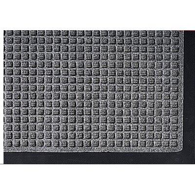 Super Soaker Doormat Size: 34 x 58