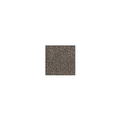 Grounds Keeper Doormat Size: 48 x 72