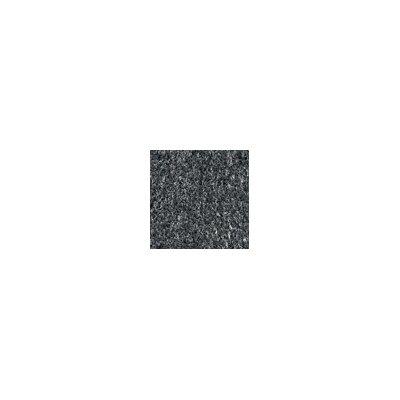 Wonder Pro Doormat Mat Size: 36 x 60