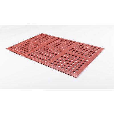 Pro-Lite Drain Doormat Rug Size: 2 x 3, Color: Terracotta