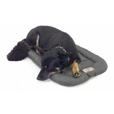 Water Resistant Crate Dog Mat Size: 35 L x 22 W, Color: Gray