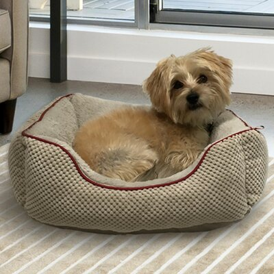Dog Bolster Size: 20 L x 17 W, Color: Warm Gray