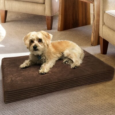 Orthopedic Dog Bed Color: Brown, Size: 35 L x 22 W