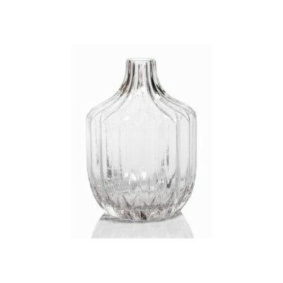 Astrud 9-inch Tall Glass Short Neck Table Vase (Set of 2) CH-4367