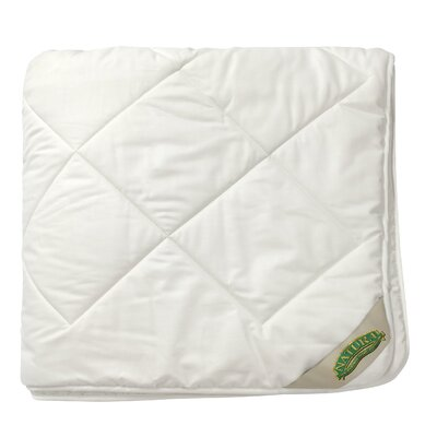 Wash N Snuggle All Season Comforter Size: Twin