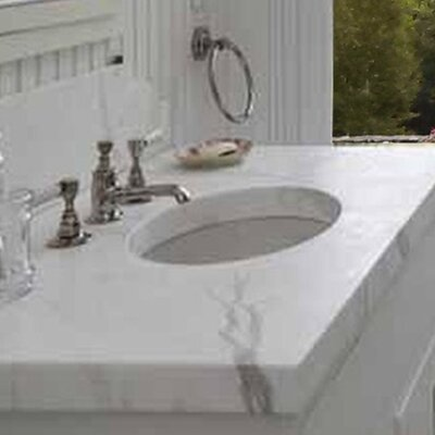 Great Point Oval Undermount Bathroom Sink with Overflow Sink Finish: White