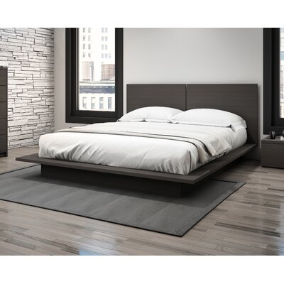Decimus Queen Platform Bed Rails and Footboard Color: Charcoal Gray