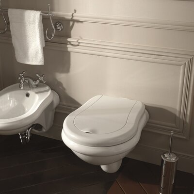 Retro Elongated Toilet Bowl