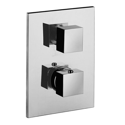 Level Concealed Thermostatic Two Outlet Diverter Shower Faucet Trim