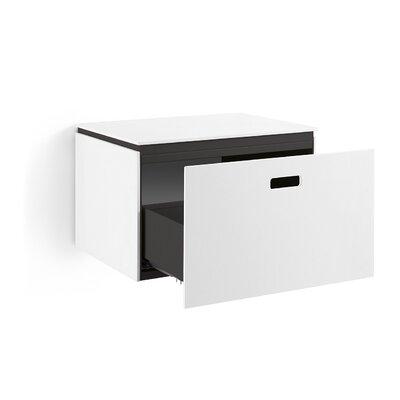Linea Ciacole 20 Wall Mount Single Bathroom Vanity Base Base Finish: White /  Dark Grey