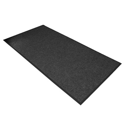 Polynib Solid Doormat Size: Rectangle 3 x 6, Color: Charcoal