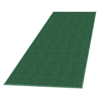 Solid Doormat Mat Size: Rectangle 3 x 5, Color: Leaf Green