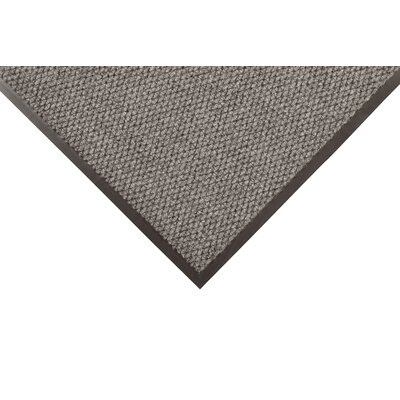 Polynib Solid Doormat Size: Rectangle 3 x 10, Color: Gray
