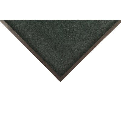 Solid Dante Doormat Color: Green, Size: 4 x 6