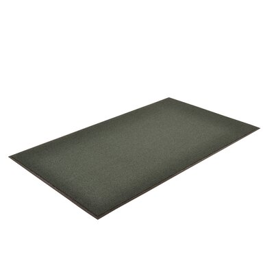 Solid Estes Doormat Color: Green, Size: 3 x 5