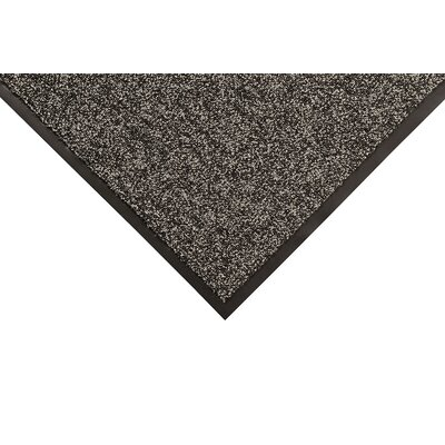 Opera Doormat Color: Gray, Size: Runner 3 x 12