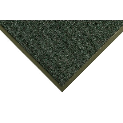 Opera Doormat Size: Runner 3 x 12, Color: Green