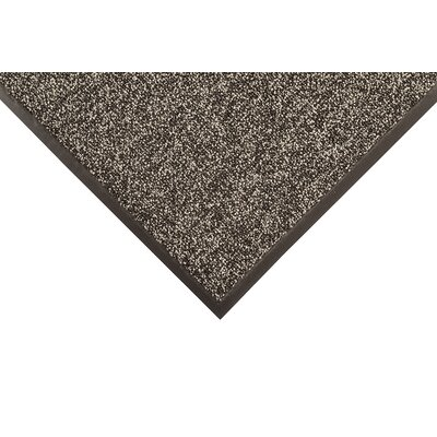 Prelude Doormat Mat Size: Rectangle 4 x 6, Color: Gray