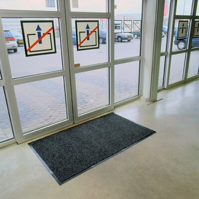 Doormat Mat Size: Rectangle 4 x 8, Color: Charcoal