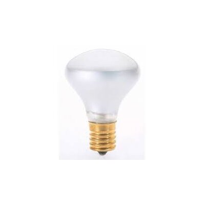 25W Incandescent Light Bulb