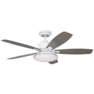 54 Jeanine 5 Blade Outdoor Ceiling Fan Finish: Satin White with Driftwood Blades