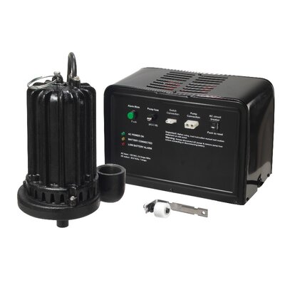 Wayne 24V Cast-Iron Battery Back-Up Sump Pump System at Sears.com