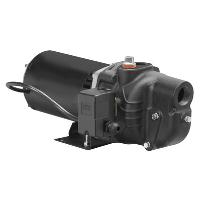 1 HP Cast-Iron Shallow Well Jet Pump