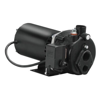 3/4 HP Cast-Iron Convertible Well Jet Pump