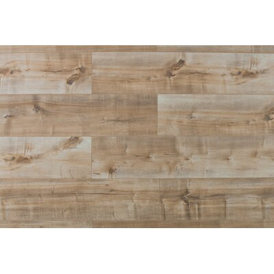 Casa Fortuna 8 x 48 x  12mm Maple Laminate in Coco Fresco