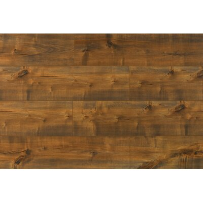 Dombrowski 8 x 48 x 12mm Maple Laminate Flooring in Flores