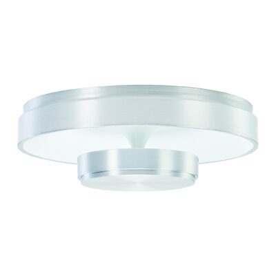 Eclipse 4-Light Ceiling Light