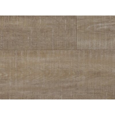 Coretec Plus 8.97 x 72 x 8.1mm WPC Luxury Vinyl Plank in Harbor Oak