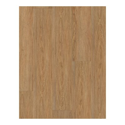 Coretec Plus 9 x 72 x 8.1mm Luxury Vinyl Plank in Brown