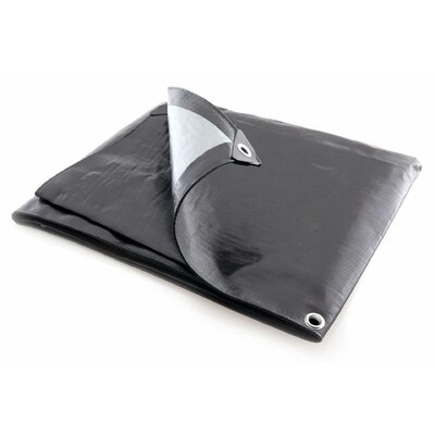 6 Ft. W x 8 Ft. D Tarp Color: Black / Silver