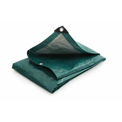 8 Ft. W x 10 Ft. D Tarp Color: Green / Silver